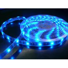 CRI80 LED cinta de luz 3014 DC12V fresco blanco LED tiras