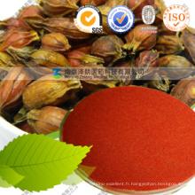 Extrait Gardenia Coloriage naturel Gardenia Red Pigment Powder