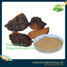 2016 Nuevo producto Extracto de raíz de Milkwort de Thinleaf / Extracto de Polygala Tenuifolia Willd, Extracto de raíz de Milkwort / Extracto de Milkwort