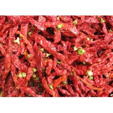 2014 nuevos pimientos rojos secados al cultivo