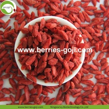 Fuente de la fábrica Healthy Nutrition Wholesale Goji