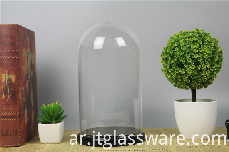 glass dome D15 x H26cm