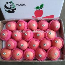 Hot sale fresh red fuji apple