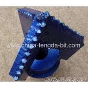 Tengda Petroleum Supplies 9 1/2inch Drag Bits(3 Ways)