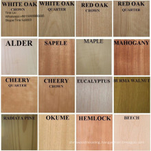 Engineered/Artificial/Recon Wood Veneer