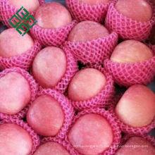 pommes chinoises différentes marques de pomme fuji