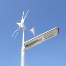 IP65 solaire et éolienne 30w a mené le réverbère