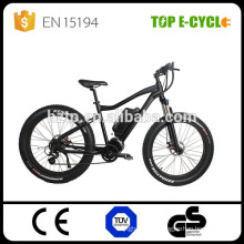 Top CE Bafang 8Fun Cheap 48V Electric Fat tire mountain Bike