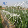 Anping Factory High Quality Concertina Razor Barbed Wire On The Wall