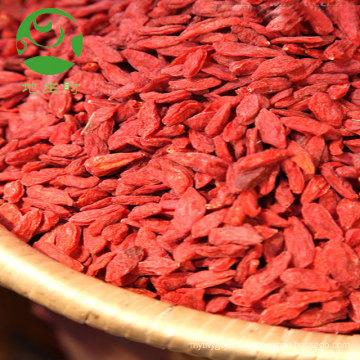 Orgânica goji berry pó extrato de fruta seca wolfberry atacadista exportação Turquia