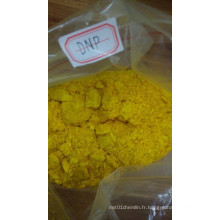 2 4-Dinitrophénol / DNP / CAS: 51-28-5
