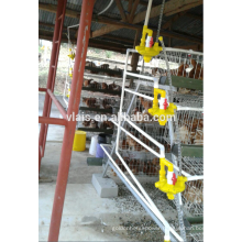 Adult chicken cage for sale, cheaper price with baby/adult chicken cage