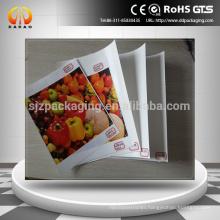 Eco-solvent &solvent Front Print Backlit PET Film