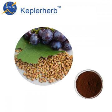 Grape seed extract 95% OPC