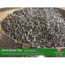 China green tea factory