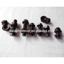 Stainless steel Flange Blot With Flange Nut