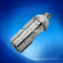 La lampe et les lampadaires extérieurs SMD remplacent la lampe fluorescente de rue