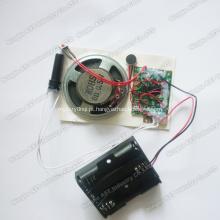 Módulo gravável do sensor de movimento, microplaqueta da voz