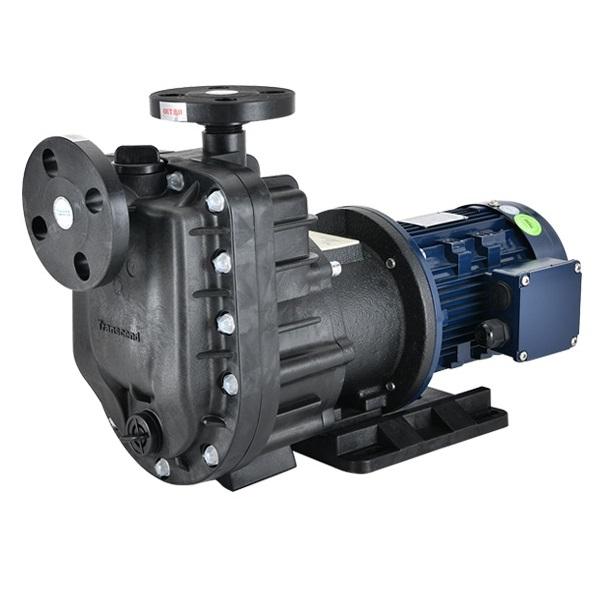 Custom Magnetic Drive Pump