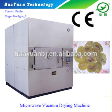 Fruit Slice Microwave Vacuum Dryer