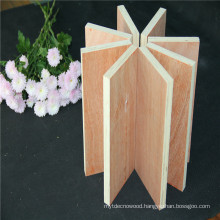 tripaly waterproof 19mm*1220*2440 film faced plywood for furniture application