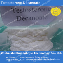 Injectable Steroid Testosterone Decanoate Powder Bodybuilding Muscle 5721-91-5