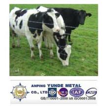 Valla de ganado galvanizado en caliente de alta calidad