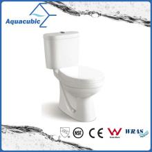 Washdown Two Piece Ceramic Toilet (ACT6858)