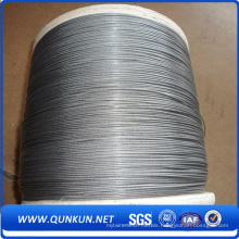 Double Twist Annealed Iron Wire in Bwg18