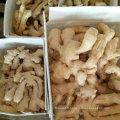 Qualité supérieure de gingembre frais d'air frais pour Europ