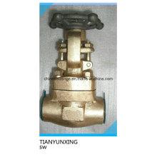 Válvula de compuerta de bronce forjado