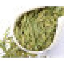 Longjing Green Tea (Dragon Well Tea)
