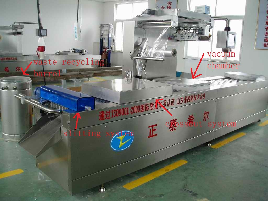Organized Continuous Stretch Film Packing Machine