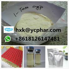 99% 1-Testosterone Cypionate 1-Test Cyp Steroid Powder Dihydroboldenone Dhb