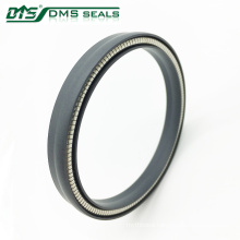 spring loaded carbon spring energized ptfe lip seals