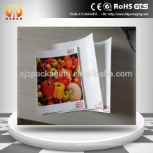 210micron Matte,Super White,Front Print Polyester Backlit film,white Pet Film