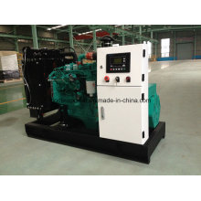 Famous Factory Cheap Price Open Type 20kw/25kVA Generator (4B3.9-G2) (GDC25)