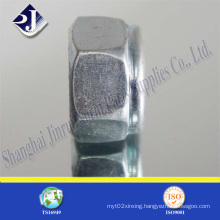 Made in China Hex Lock Nut