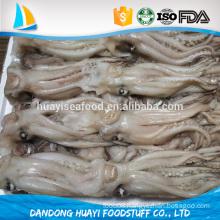 frozen best new squid tentacle for sale