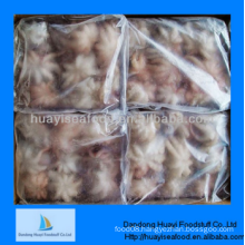 fresh premium frozen all kinds of baby octopus
