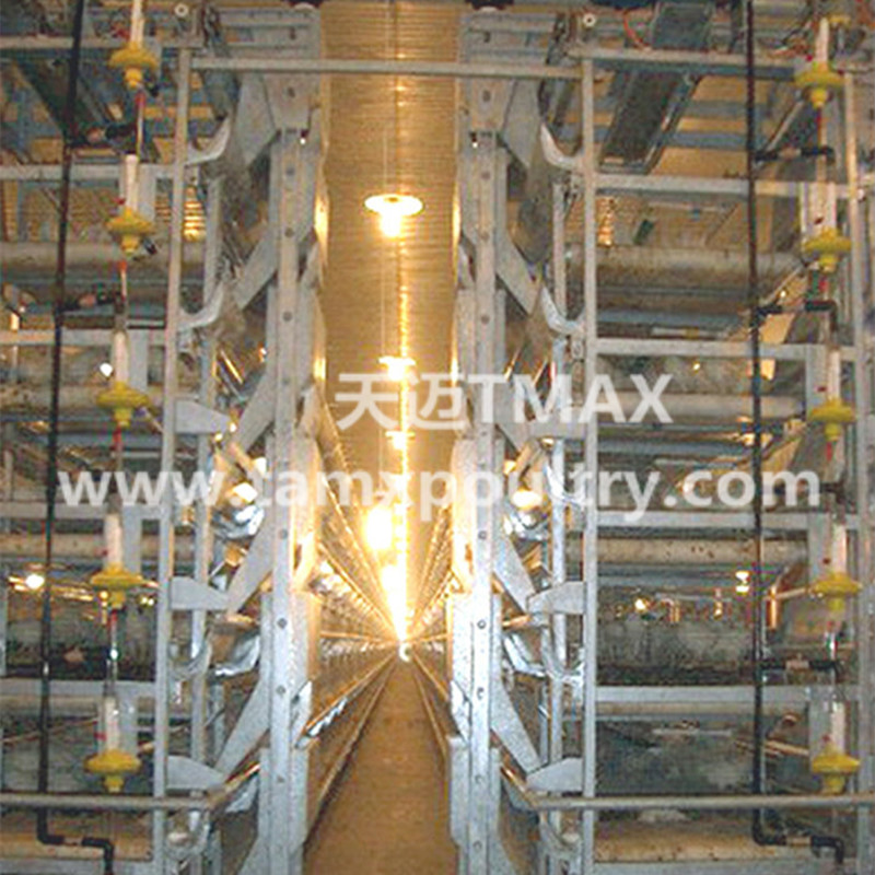 H Type Automatic Layer Cages