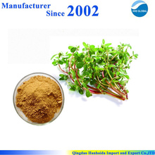 GMP factory supply high quality pure nature Portulaca Oleracea Extract , Portusana Purslane Extract