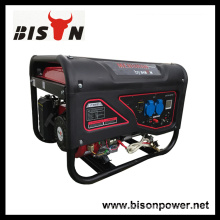 Bison China Zhejiang 3KW 6.5HP Portable Gasoline Engine Electricity Generating System Generator