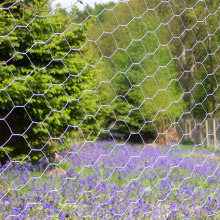 Cheap Rabbit Galvanized Hexagonal Wire Mesh