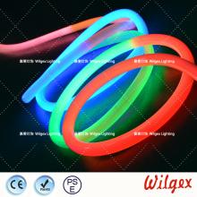 Neon rope LED flex light for garden decoration