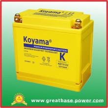 Batterie sans entretien scellée de moto 14ah 12V