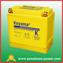 Sealed Maintenance Free Motorcycle Battery 14ah 12V