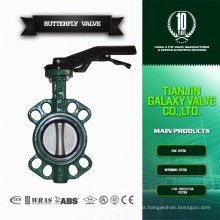 """2"""" Casting Gear Operated Butterfly Valve"""