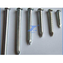Construction Widely Used Round Flat Concrete Nails