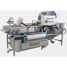 Colead New bean sprout cleaning machine /bean sprout processing line